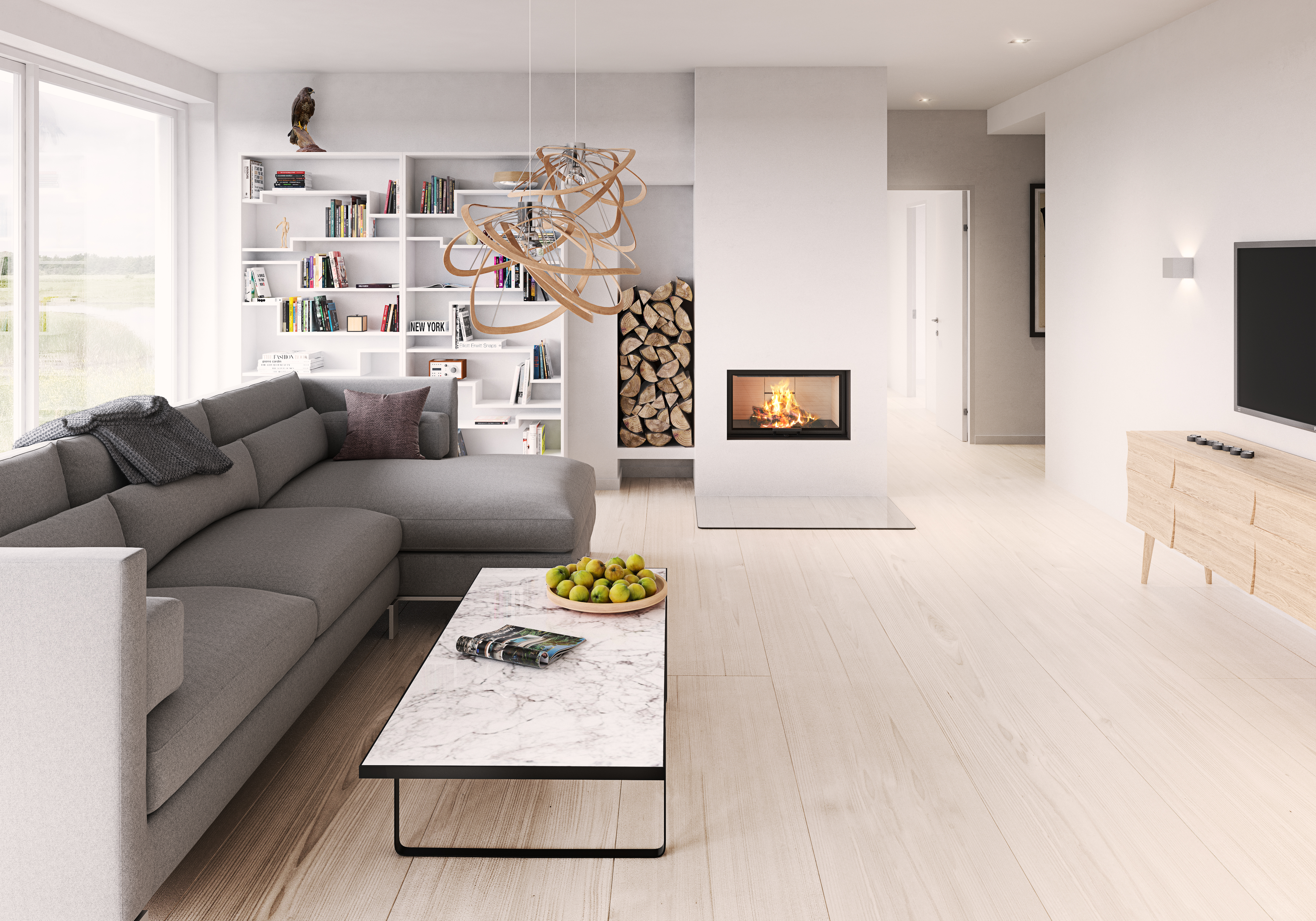 Contemporary-Modern-Glass-Fronted-Wood-Burning-Insert-Front-Facing-Fireplace